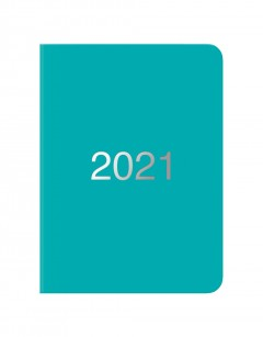 Dazzle A6 Day to Page Diary with Appointments 2021