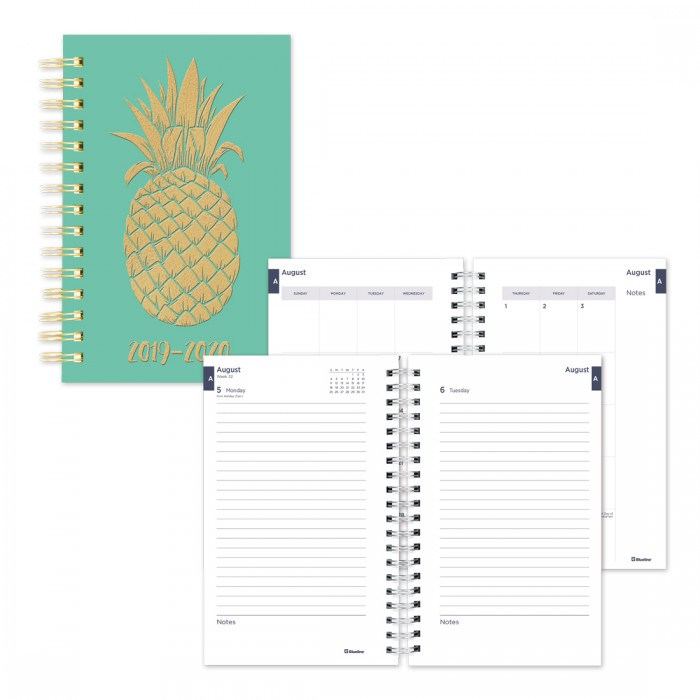 photograph about Daily Planner named Instructional Each day Planner Pineapple 2019-2020 - English