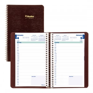 Daily Planner 2021, English