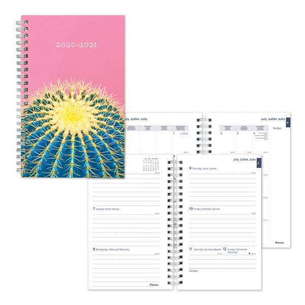 July 2020 to July 2021 Trilingual 8 X 5 Inches Twin-Wire BLUELINE Weekly//Monthly Academic Planner 13-Month CA101B.BLU-21 Blue