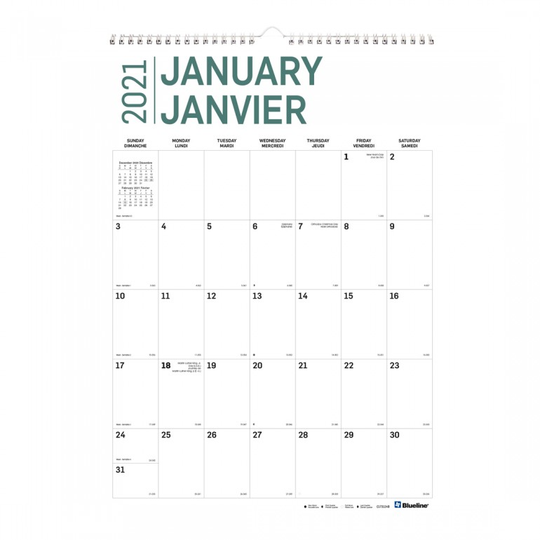 Bilingual Boho Blueline Academic Monthly Wall Calendar CA173127B-21 August 2020 to July 2021 12-Month 12 X 17 Inches